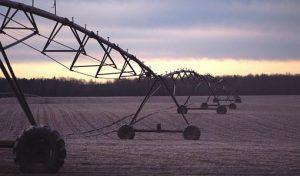Investing in Farmland