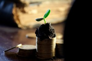 Impact investing in agriculture